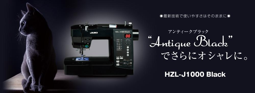 HZL-K30